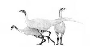 Ratite Ceratosaur by pilsator