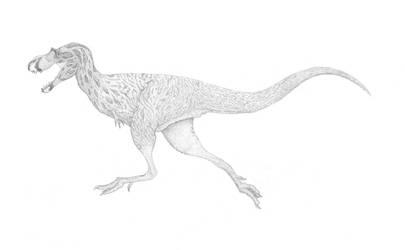 An Adolescent Gorgosaur by pilsator