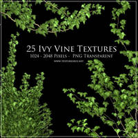 Ivy Vine Textures by roseenglish