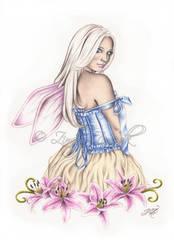 Stargazer Fairy by Zindy