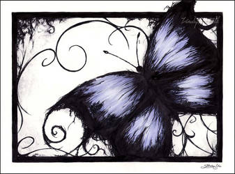 The blue butterfly by Zindy
