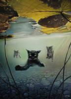 'Kote Under Water' by IlonaPankevich