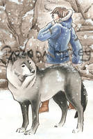 wolf.and.winter by BrendaHickey