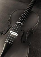 violin by motto8