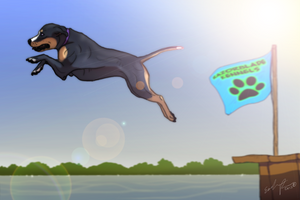 The Big Day - Ophelie - APBT - Dock Diving by Esaki