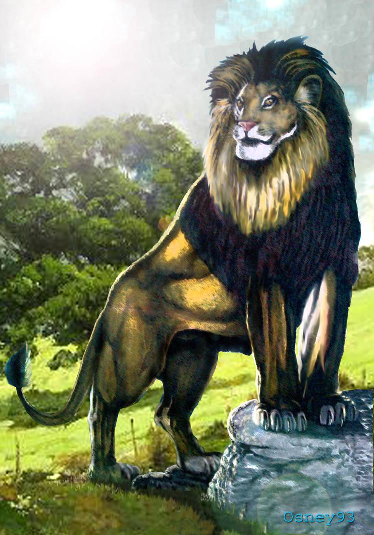 Lion Shine By Osneysjc ...
