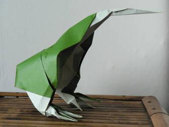Kiwi Bird by Send-a-Dream