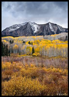 Fall in Kebler Pass by ChimpyJay