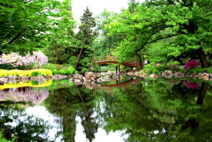 japanese garden by momofukuu