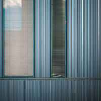 Another Sky in the Stripes by Pierre-Lagarde