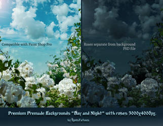 preview Premium premade Backgrounds by IgnisFatuusII