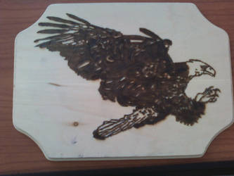Pyrography - Bald Eagle by naaxha