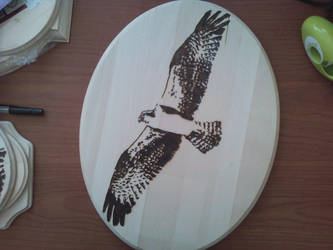 Pyrography - Osprey by naaxha