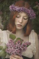 Fragile lilacs by Girlwithinsomnia
