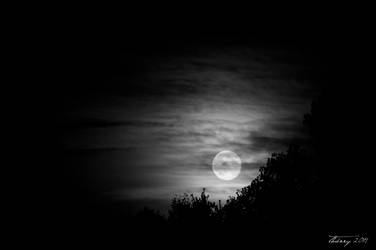 Moonrise by Grimlord666