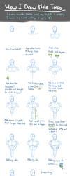 How I Draw Male Torso by nursury0