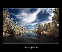 Muara Sawarna by juhe
