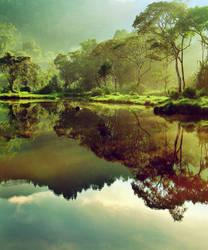 Morning at Situ Gunung II by juhe