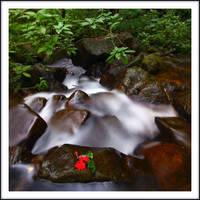 Upstream by juhe