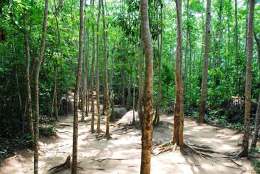 Kbal Spean path by giamoco