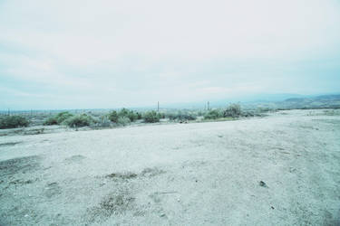 Backdrop of White Scenery by osawa-hitomi