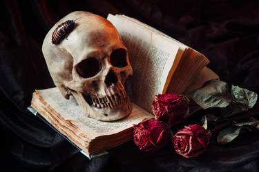 Human skull on book with flowers by Black-Bl00d