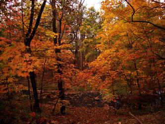 Autumn by Sugargrl14