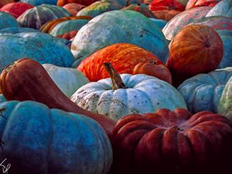 Pumpkins by Telais
