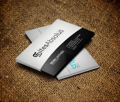 Sites Absolutes Business Card Design by vasiligfx