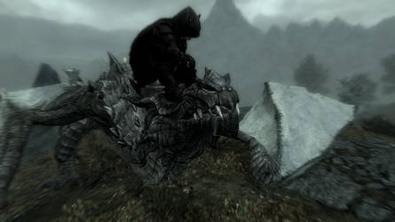Why I Love to Play Skyrim - Reason 6 by shoughad
