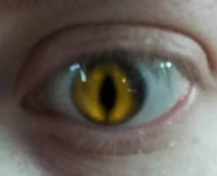 Eye of the Dragon by of-Salfarro
