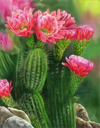 Spiky Beauty by Shelter85