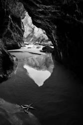 Marine Mysteries by PauloALopes