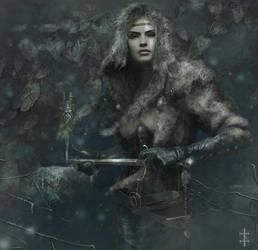 .:Winter Blade:. by EVentrue