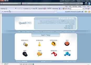 QuadCMS - CMS Panel design by proviewz