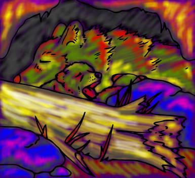 Colourful Canines by heatherleeharvey