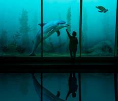 Underwater by artofexpo