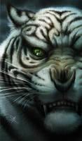 Bengal tiger by DAETRIX
