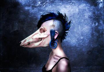 Face. by stevenquinn