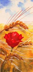 Poppy by JoanCzyk
