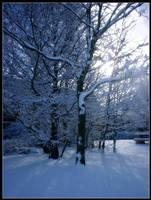 Ice Glint by eeron