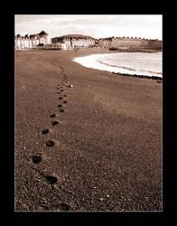 8 Year Path by eeron
