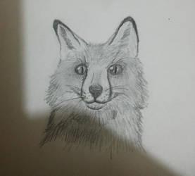 My first Fox by Geckosaurus-Rex