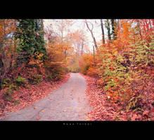 autumn by birazhayalci