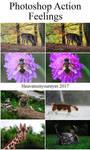 Photoshop Action - Feelings by Heavensinyoureyes
