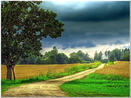Country road... by Yancis