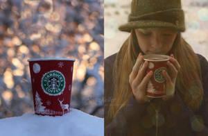 beautiful winter by Rona-Keller