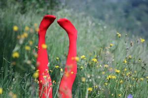 I lay in yellow sprayed fields by Rona-Keller
