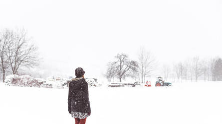 and then the snow came by Rona-Keller