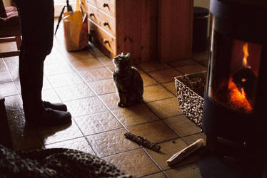 precious moments by Rona-Keller